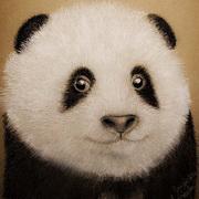 Panda Smile, Mix media, pencil, pastel