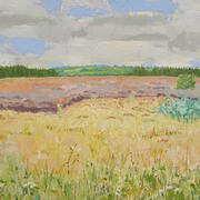 Bogland Colours Oil on canvas