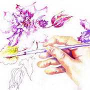 Painting Clematis