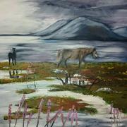 Horses at Connemara