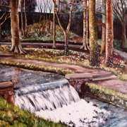 Waterfall, Monastery Walk, Roscrea