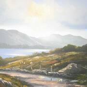 Connemara Sunlight