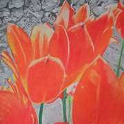 Irish Art, Orange tulips against the wall,