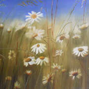 Irish art. Daisies, artist Claire Lyons, Dublin and Galway