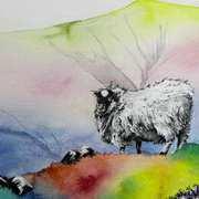 Galtee Mountain Wool