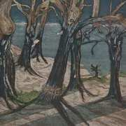 Verletzte Baeume - Injured Trees