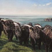 Irish Art, The Belties,