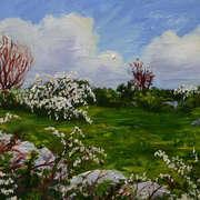 May Field