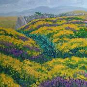 Connemara Colours 49