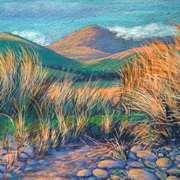 Ventry Grasses