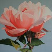 Irish Art, Pink rose,