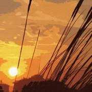 La Mata Sunset