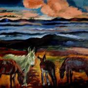 Donkeys Mourne Mountains