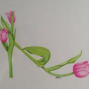 Shoe Tulip Style