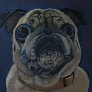 Irish Art, Dot the Pug,