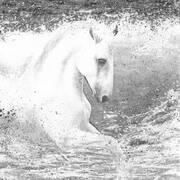 Irish art. Whitehorses, artist Kelly Hood, England and Kerry