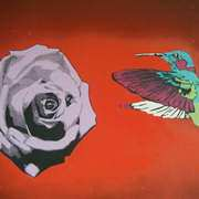 Irish Art, Lavender Rose and Hummingbird,