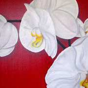 Irish Art, Orchids,