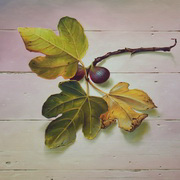 Two Figs, Three Leaves