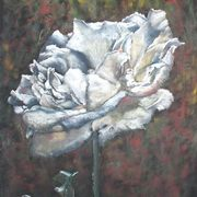 Irish Art, Just a Rose,