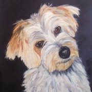Irish Art, My Boy Buster,