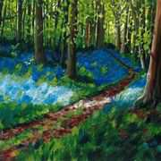 Bluebells in Clogrennane Woods