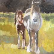 Coloured Mare and Foal