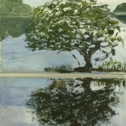Blessington Lake 2