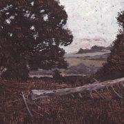 Donal's Field