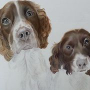Irish Art, Spaniel Brothers,