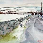 'Icy Road Ballybetagh Co. Dublin'