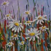 Irish Art, White Daisies,