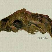 Driftwood, Inks