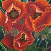 Irish Art, Poppies (1),