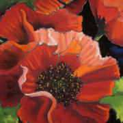 Irish Art, Poppies (2),