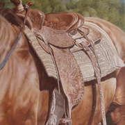 Western Saddle Study