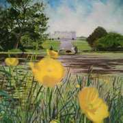 A View Through Buttercups, Powerscourt