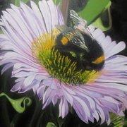 Bumblebee no. 3