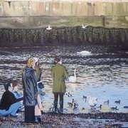 Feeding the Ducks Bray Harbour