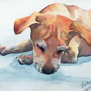 Irish Art, Buster,