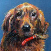 Portrait Commission of Toby