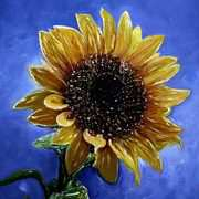 Irish Art, Sunflower,