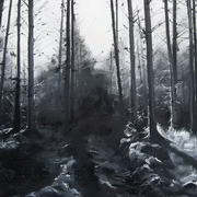 Irish art. Pinewoods, artist Sheelagh Cross, England and Kilkenny