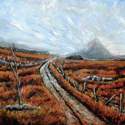 The Backroad to Errigal