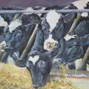 Irish Art, Paudies Cows,