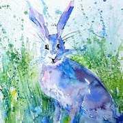 Hare Stare