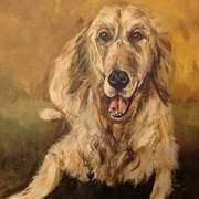 Irish Art, Portrait of a dog,