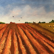 'Ploughed Field'