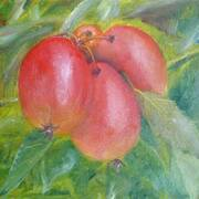 Crab Apples.2010, Oil on canvas panel, 15cm x 23cm by Frank Daly