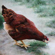 The Red Hen,acrylic on canvas,25 x 30 cm